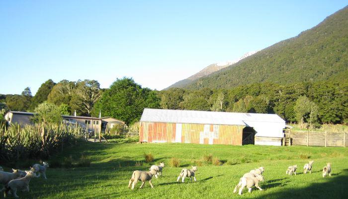 Mountainview Makarora accommodation neighbours